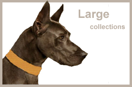 Large Breed Collections