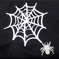 Spooky Spider T-shirt
