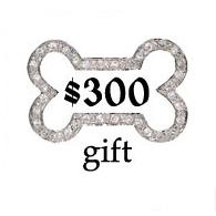 $300 Gift Certifiate