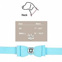 Tiffany Bow Collar